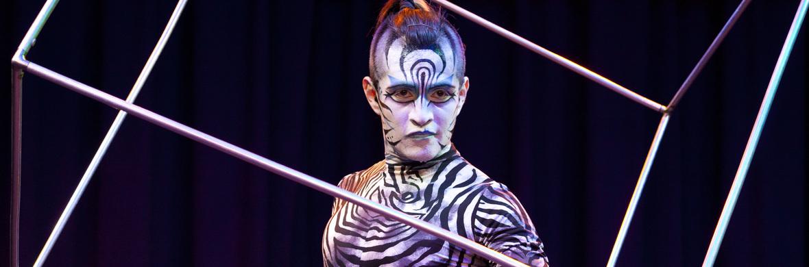 Juggling Cube  - Circus Acts - CircusTalk