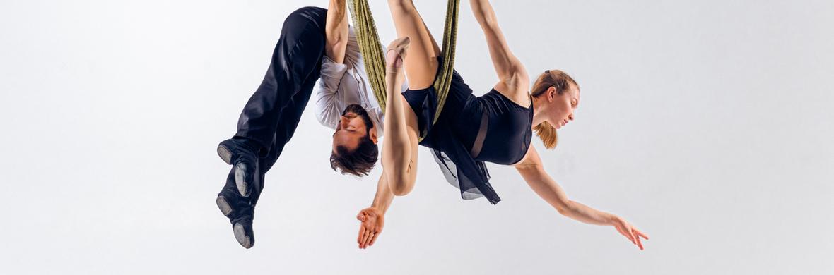 Duo aerial net act 2021 - Circus Acts - CircusTalk
