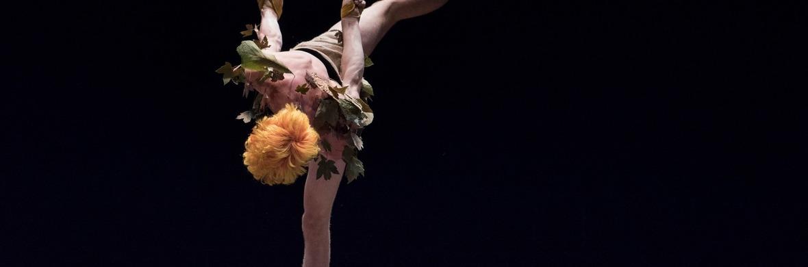 Extinction Du Solide - Circus Acts - CircusTalk