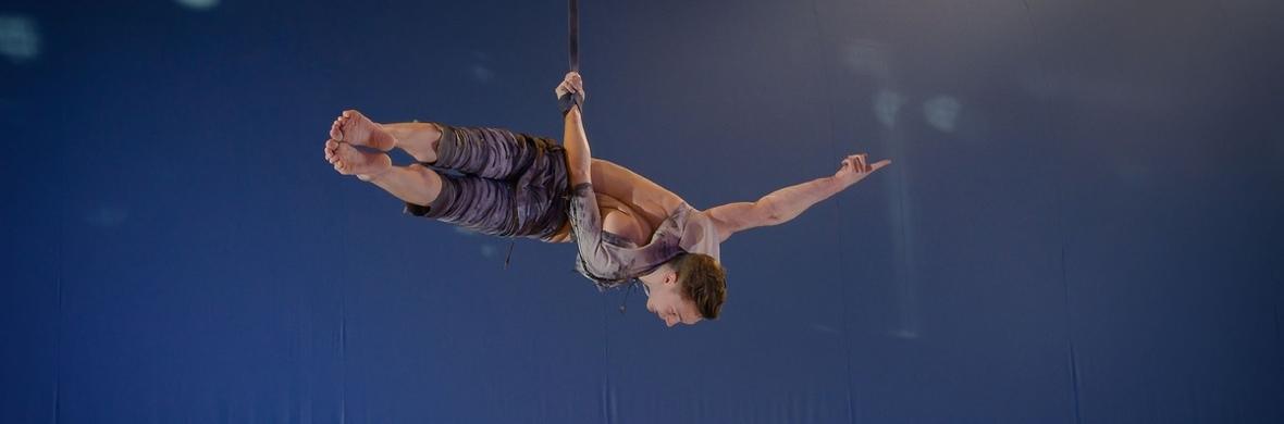 Aerial straps - Circus Acts - CircusTalk