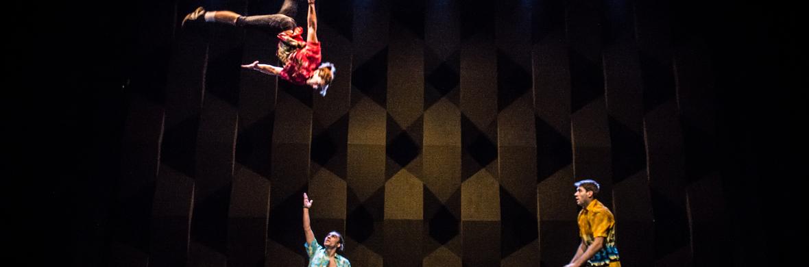 Arte algo DUO TEETERBOARD - Circus Acts - CircusTalk