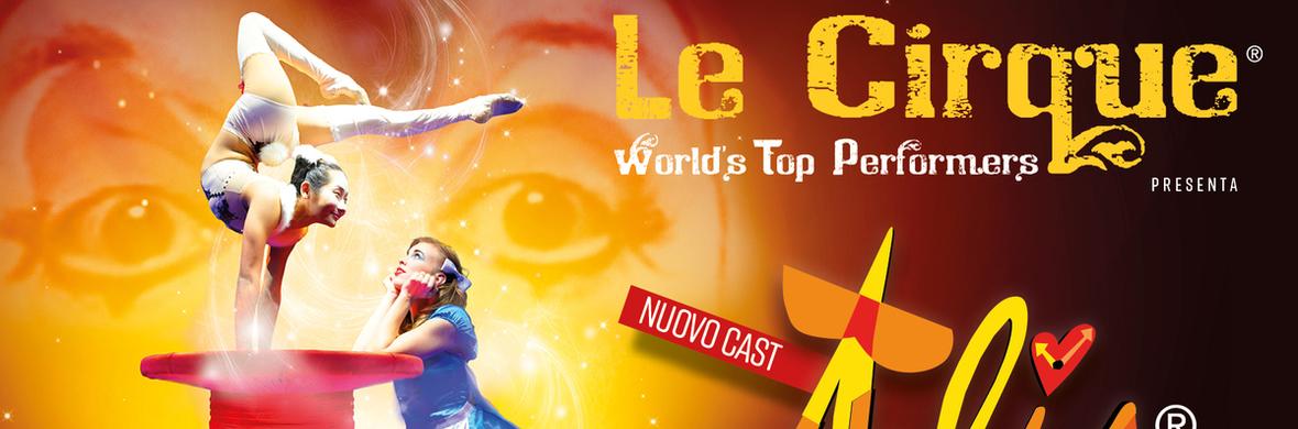 ALIS - Artistic Director Onofrio Colucci - Circus Shows - CircusTalk