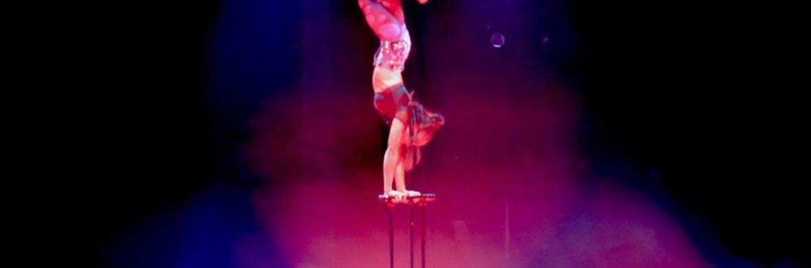 Shenea Stiletto Handbalancer  - Circus Acts - CircusTalk