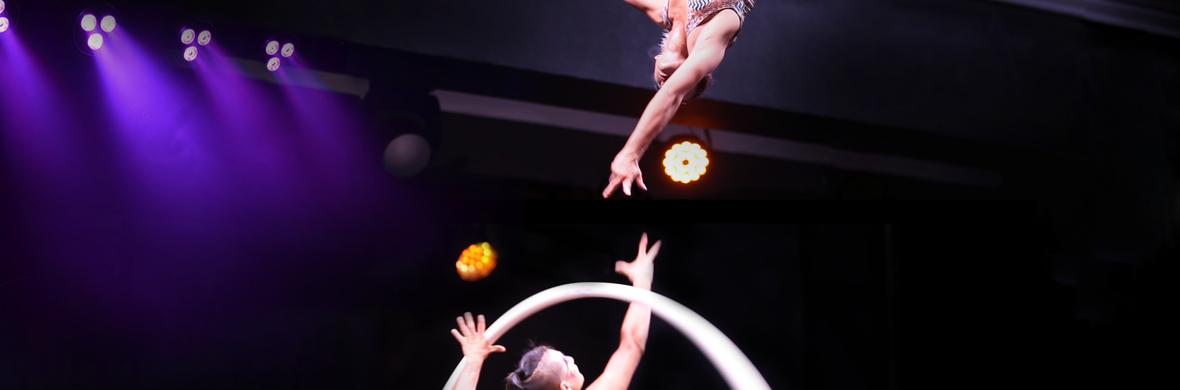 Lyra & Cyr Wheel Duo - Circus Acts - CircusTalk
