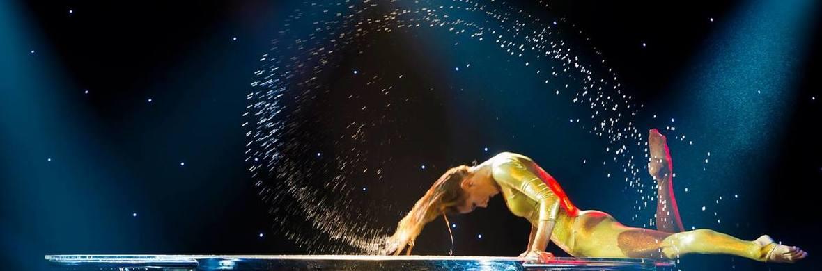 waterbowl - Circus Acts - CircusTalk