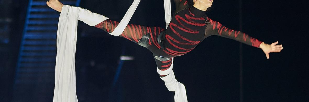Dynamic and unusual silks act - Circus Acts - CircusTalk