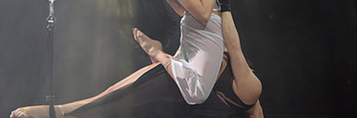 The  Body Trapeze - Circus Acts - CircusTalk