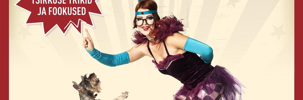 Сomedy Dog Theater Mironoff - Circus Acts - CircusTalk
