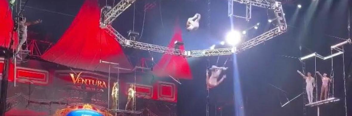 The Flying Royals - Circus Acts - CircusTalk