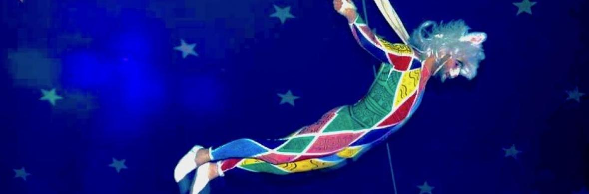 Aerial Bungee - Circus Acts - CircusTalk