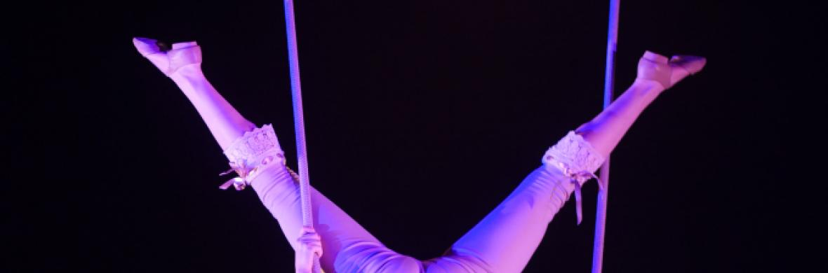 Flying, a poem - Circus Acts - CircusTalk