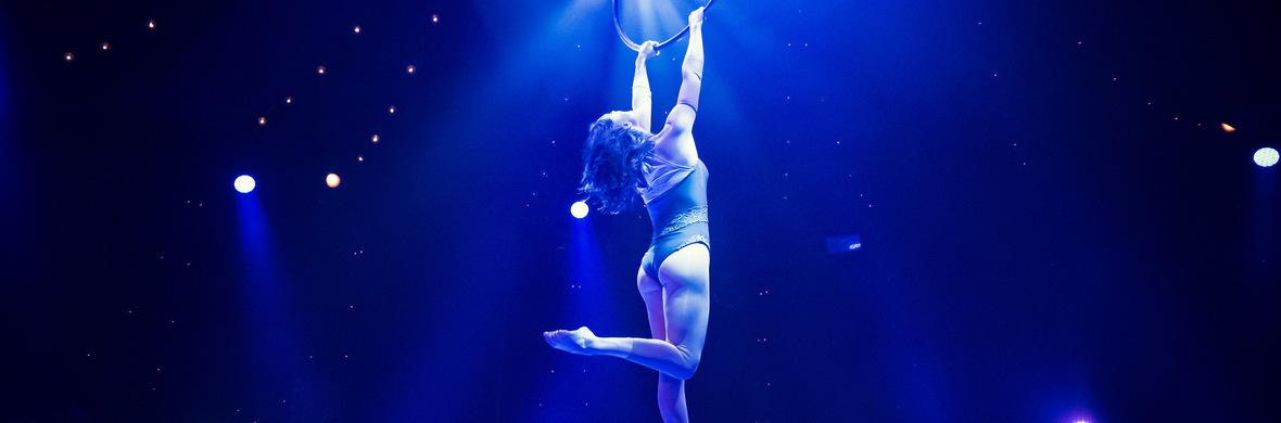 RACHEL L | Aerialistsofinstagram  - Circus Acts - CircusTalk