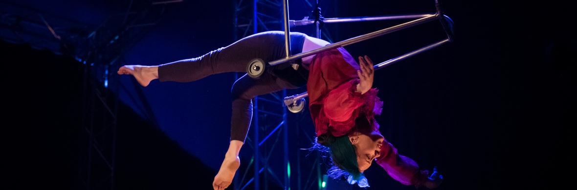 Hogwallops - Circus Shows - CircusTalk