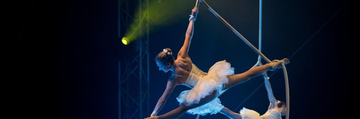 Spanish Web (Ballerinas) - Circus Acts - CircusTalk