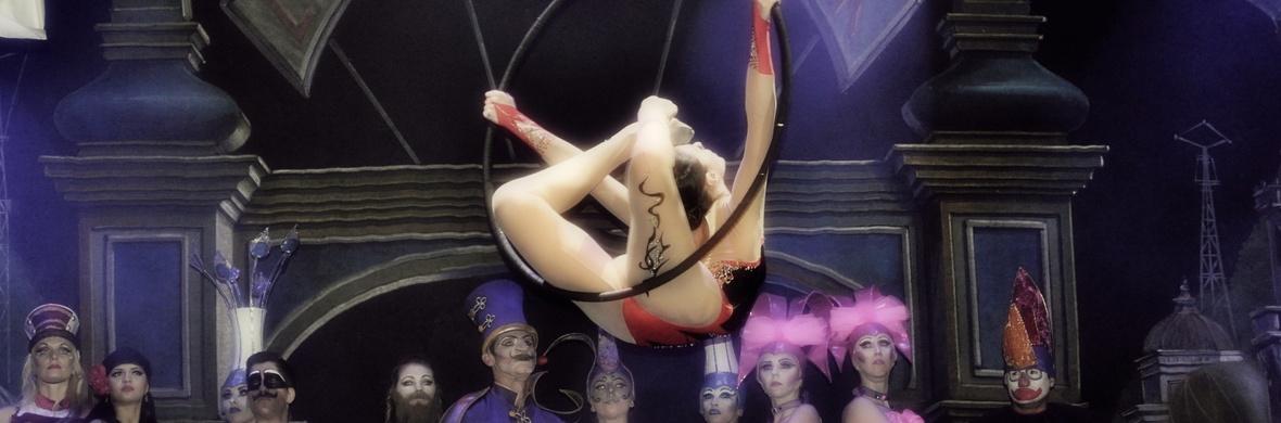 Aerial Lyra, aerial silks, aerial pole, contortion, hula hoops. - Circus Acts - CircusTalk