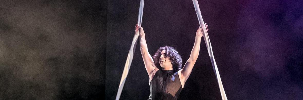 Singing Aerial Straps - Circus Acts - CircusTalk