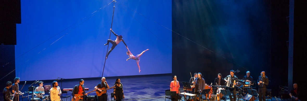 SwingAgain - Aerial pole duo act by Grotesque Gymnastics - Circus Acts - CircusTalk