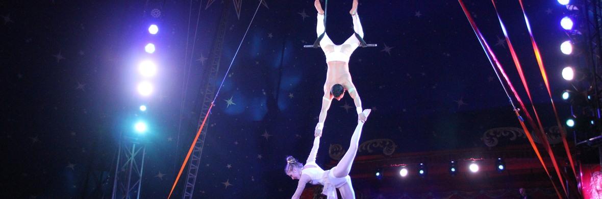 Duo Trapeze  - Circus Acts - CircusTalk