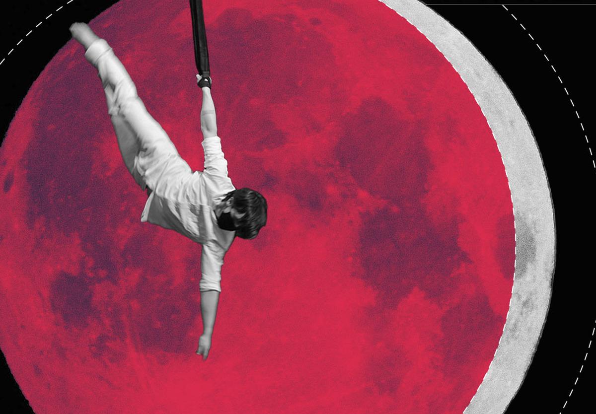 Backyard @NECCA -  A Circus Show! - Circus Events - CircusTalk