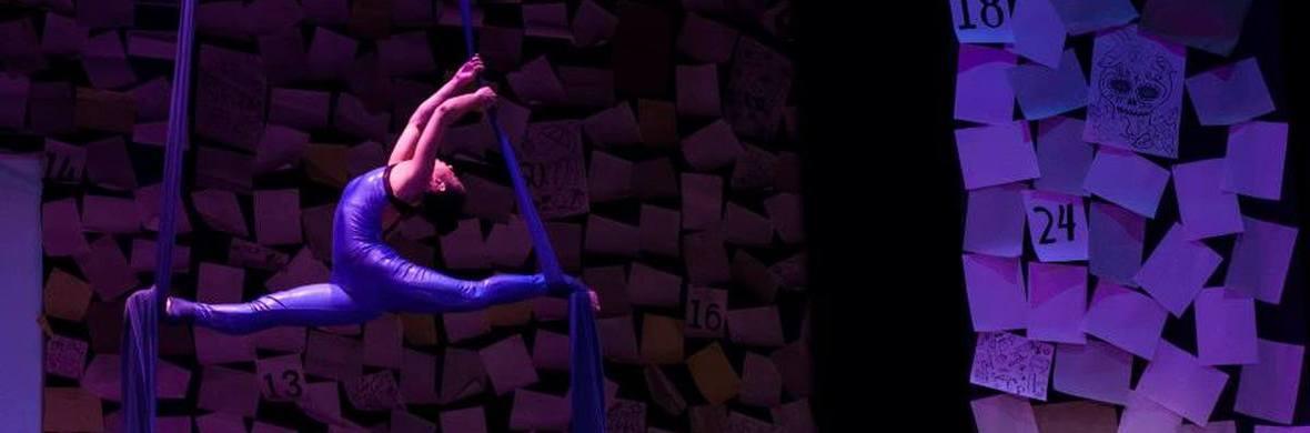 Aerial silks Gabriela Carrera - Circus Acts - CircusTalk