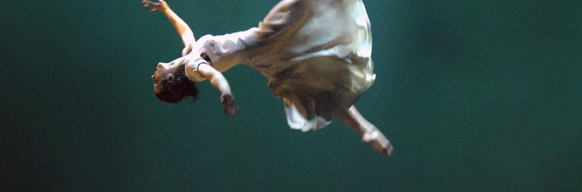 Nebbia - Circus Shows - CircusTalk