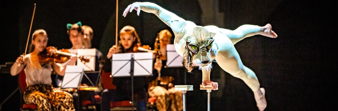 Carnival of the Animals - Circus Shows - CircusTalk