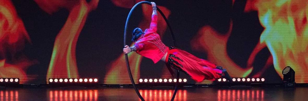 Cyr Wheel - Circus Acts - CircusTalk