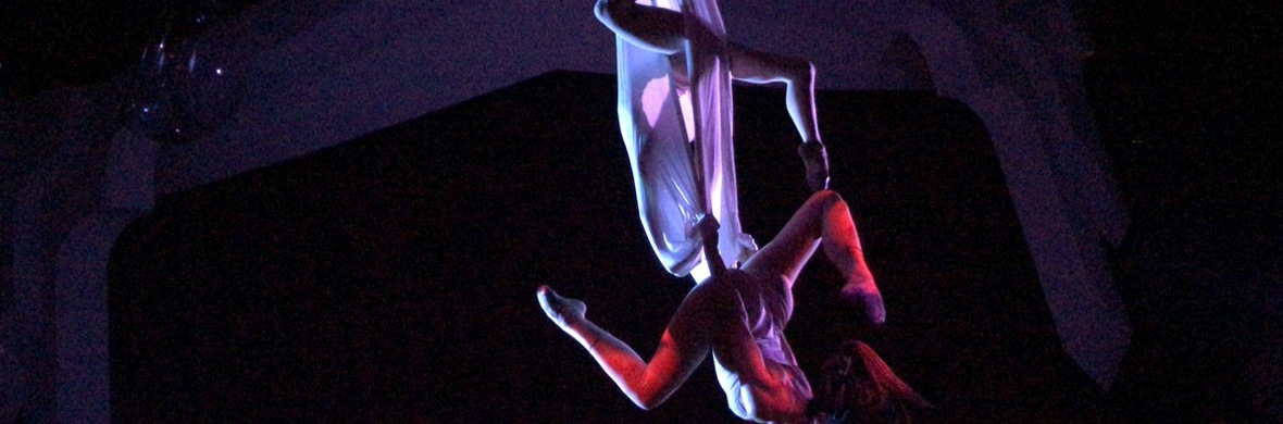 trio. voice and hammock - Circus Acts - CircusTalk