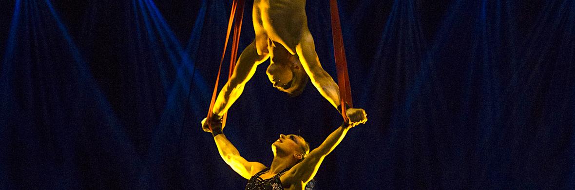 Aerial Straps Duo - Circus Acts - CircusTalk