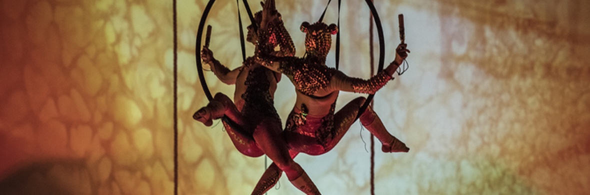 The Fishers Wish - Circus Shows - CircusTalk