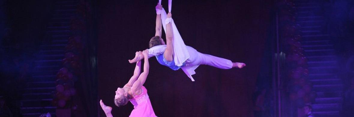 Aerial silks duo - Circus Acts - CircusTalk