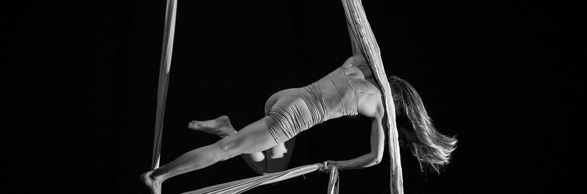 Mue(s) - Circus Acts - CircusTalk