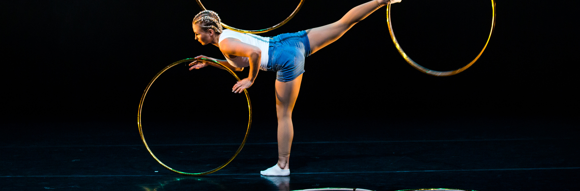 Golden circle - Circus Acts - CircusTalk