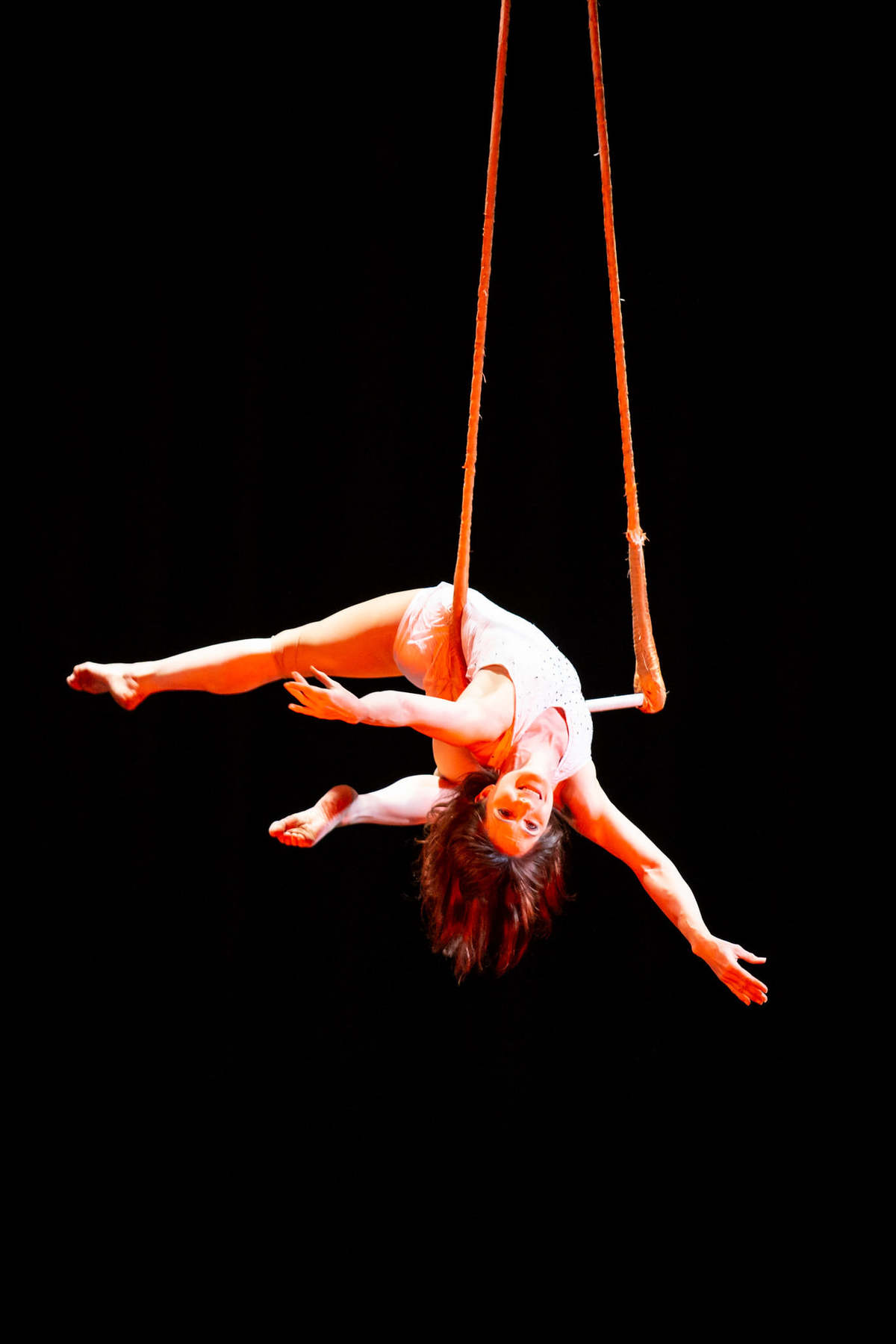 Circus Spectacular - Virtual Streaming - Circus Events - CircusTalk