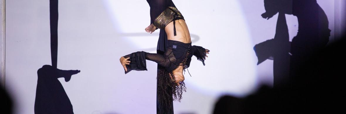 Levitate: Integral's Spellbinding Aerial Showcase - Circus Shows - CircusTalk