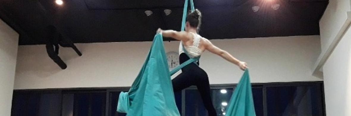 Doubles Aerial Silks Dance - Circus Acts - CircusTalk