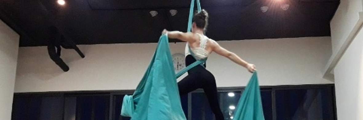 Doubles Aerial Silks Dance - Circus Acts - CircusTalk