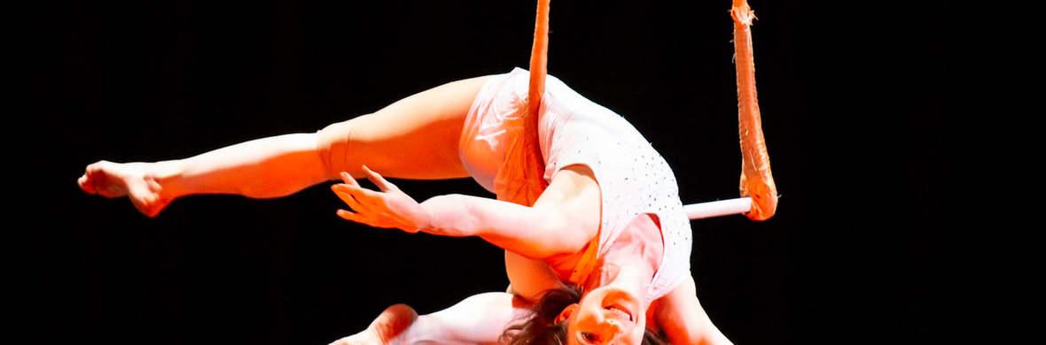 Circus Spectacular - Virtual Streaming - Circus Shows - CircusTalk