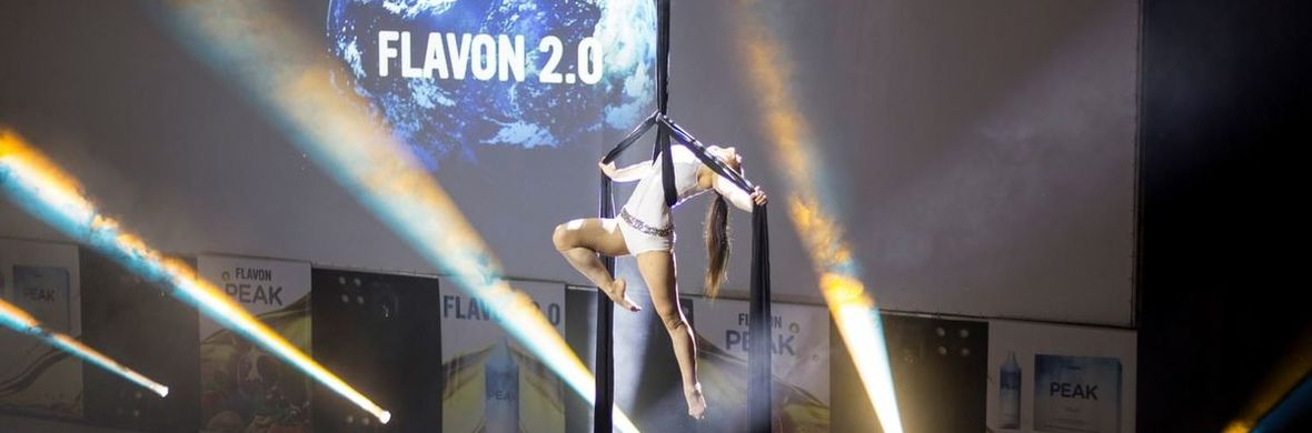 Aerial silk, ring acts - Circus Shows - CircusTalk