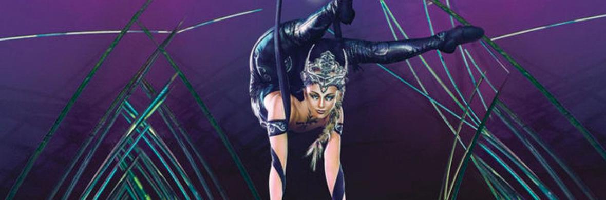 Contortion Aerial Straps - Circus Acts - CircusTalk
