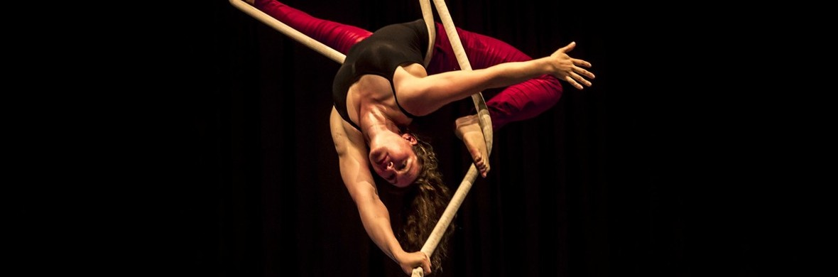 Aerial rope act - Traditional Circus - Circus Acts - CircusTalk