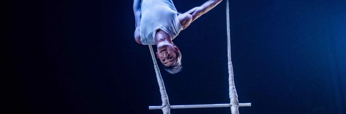Double Bar Dance Trapeze - Circus Acts - CircusTalk