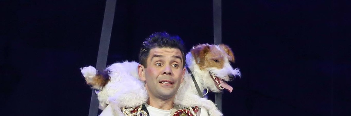 Comedy Flying dog  - Circus Acts - CircusTalk