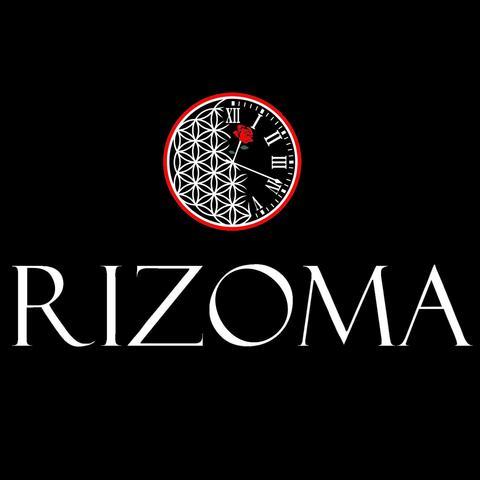 RIZOMA - School - Ukraine - CircusTalk