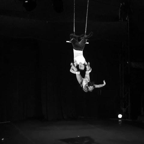 Bryndís Torfadóttir - Individual - Iceland - CircusTalk