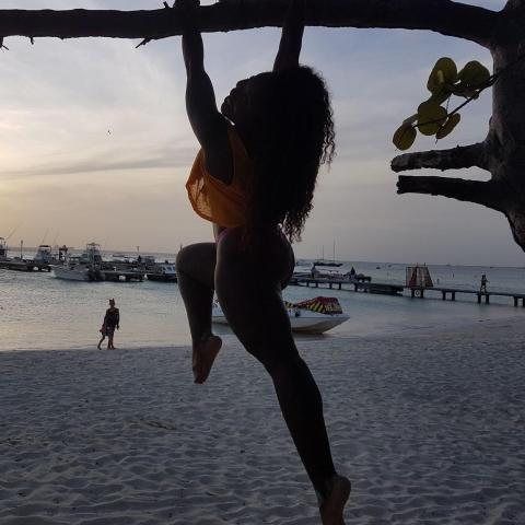 Dark Cinammon - Individual - Brazil - CircusTalk