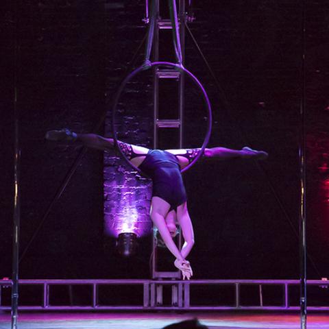 Savannah Lee - Individual - United States - CircusTalk