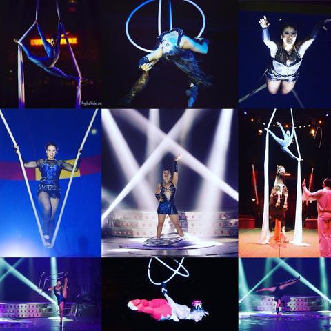 Priscilla Krateyl marques - Individual - Brazil - CircusTalk
