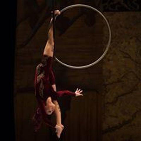 Fábia Macedo - Individual - Brazil - CircusTalk