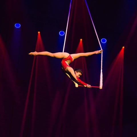 Janine Eggenberger - Individual - Switzerland - CircusTalk